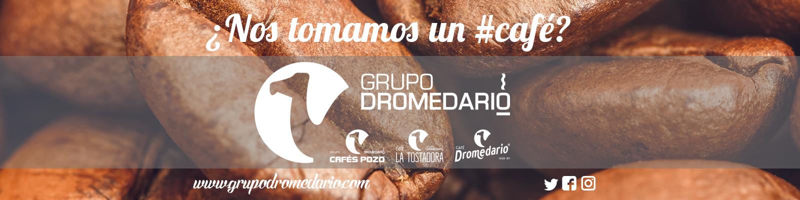 BANNER Café Dromedario